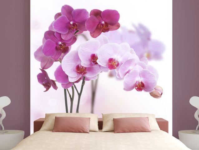 טפט לחדר שינה - פרחים