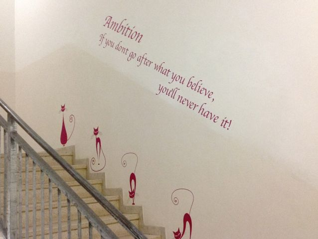 Wall branding in schools and colleges 6