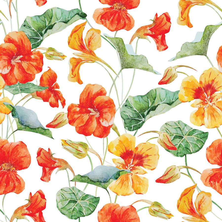 טפט – פרחים ועלים מאוירים